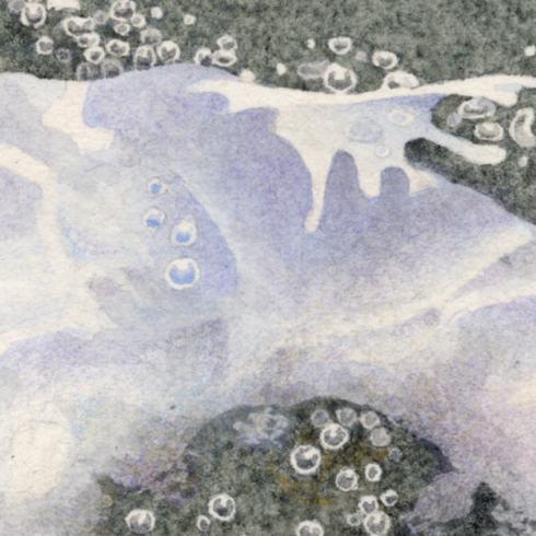 detail-splashing-clamshell2
