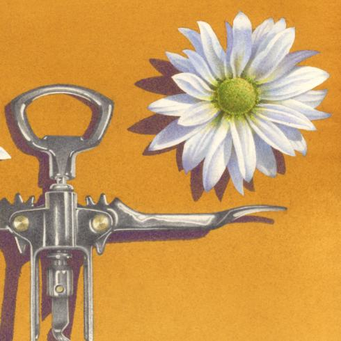 detail-juggling-daisies