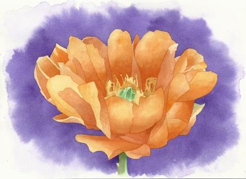 ORANGE FLOWER 9