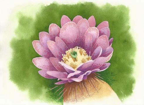 VIOLET FLOWER 130001