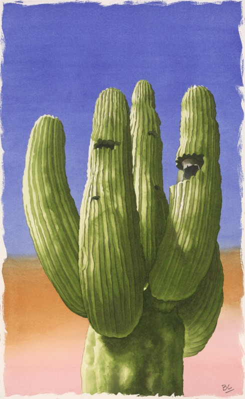 CROPPED CACTUS 1 MED RES